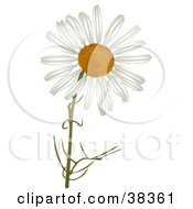 Clipart Illustration Of A White Camomile Flower