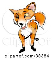 Clipart Illustration Of A Friendly Male Fox With Yellow Eyes by dero