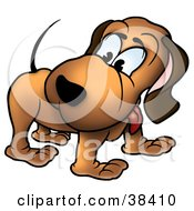 Clipart Illustration Of A Brown Dog Looking Back At His Own Tail by dero