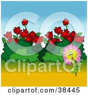 Clipart Illustration Of A Nature Background Of A Happy Pink Flower By Bushes And Red Roses
