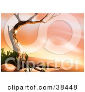 Clipart Illustration Of A Nature Background Of A Bare Tree Framing A Desert Landscape Scene