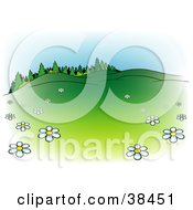 Clipart Illustration Of A Nature Background Of White Spring Flowers In A Meadow At The Edge Of A Lush Forest