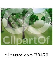 Clipart Illustration Of Light Shining Through The Leaves Of Trees On A Hillside