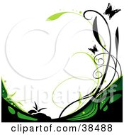 Black And Green Vine Curving Along The Bottom Of A White Background With Black Butterflies