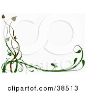 Clipart Illustration Of A White Background Bordered With Brown And Green Organic Vines by dero