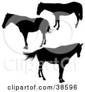 Clipart Illustration Of Three Silhouetted Horses by dero