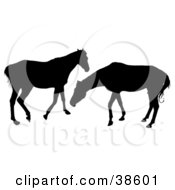 Clipart Illustration Of Two Silhouetted Horses Playing by dero