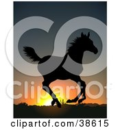 Clipart Illustration Of A Wild Running Horse Silhouetted Against An Orange Sunrise