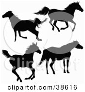 Clipart Illustration Of Silhouetted Horses Running And Trotting by dero