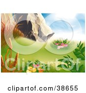 Clipart Illustration Of Orange Grasses And Pink Flowers And Plants Growing In A Mountain Meadow by dero