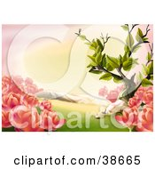 Clipart Illustration Of Beautiful Pink Spring Flowers And Grass In A Meadow by dero