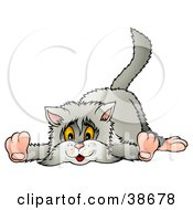 Clipart Illustration Of A Clumsy Long Haired Gray Cat Laying On Its Belly by dero