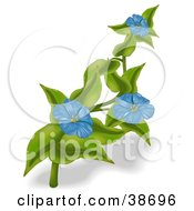 Clipart Illustration Of Three Blue Anemone Flowers On A Plant