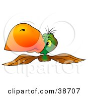Clipart Illustration Of A Brown And Green Parrot With An Orange Beak Flying Forward by dero