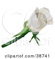 Clipart Illustration Of A Single White Rose With Thorns