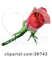 Clipart Illustration Of A Single Red Rose With Thorns