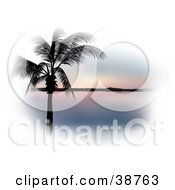 Clipart Illustration Of A Palm Tree Silhouetted In Black Against A Pastel Pink Sunset