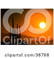 Bright Orange Sunset Silhouetting Cactus And Mountains