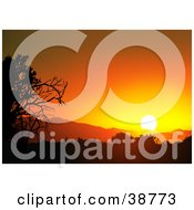 Clipart Illustration Of A Tree Silhouetted At An Orange Sunset by dero