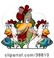 Clipart Illustration Of A Handsome Alpha Rooster With His Wings Around Two Pretty Hens