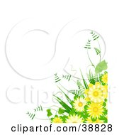 Fern And Yellow Flower Bouquet Over A White Background