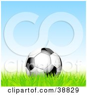 Black And White Soccer Ball Resting In Green Grass Against A Blue Sky