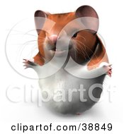 Clipart Illustration Of Hammy The Productive Hamster Smiling And Holding His Arms Out by Leo Blanchette