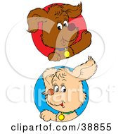 Clipart Illustration Of Friendly Beige And Brown Puppy Dogs Peeking Out Through Red And Blue Circles