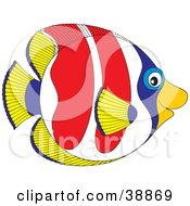 Clipart Illustration Of A Friendly Yellow Blue White And Red Saltwater Fish In Profile