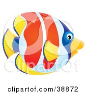 Clipart Illustration Of A Friendly Yellow Blue White And Red Tropical Fish In Profile