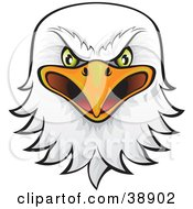 Clipart Illustration Of A Fierce Green Eyed Bald Eagle Head