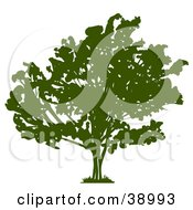 Clipart Illustration Of A Wide Green Silhouetted Tree With Thick Foliage