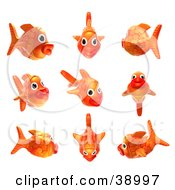 Clipart Illustration Of A 3d Goldfish Shown In Nine Different Poses