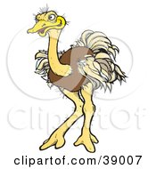 Clipart Illustration Of A Brown Ostrich Bird With Ruffled Feathers