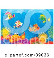 Clipart Illustration Of An Underwater Scene Of Colorful Tropical Fish And A Crab Socializing At A Coral Reef