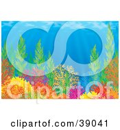 Clipart Illustration Of An Underwater Scene Of Sunlight Shining Down On Colorful Corals Plants And Anemones On A Reef