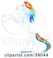 Clipart Illustration Of A White Horse With A Rainbow Colored Mane And Tail Rearing Up On Its Hind Legs