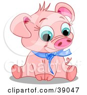 Adorable Pink Male Pig Wearing A Blue Ribbon Sitting And Smiling