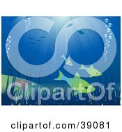 Clipart Illustration Of An Underwater Scene With Fish Bubbles Plants And Starfish