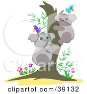 Two Koala Bears With Birds On Their Heads Hugging A Tree