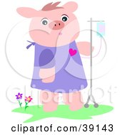 Clipart Illustration Of A Recovering Pig In A Hospital Gown Walking With An IV Dispenser by bpearth