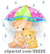 Poster, Art Print Of Baby Teddy Bear Cuddling With Its Mother Under An Umbrella On A Rainy Day