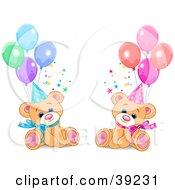 Clipart Illustration Of Male And Female Twin Birthday Bears Wearing Party Hats And Sitting With Balloons by Pushkin