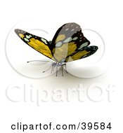 Clipart Illustration Of A Yellow Butterfly With Solar Panel Wings by Frank Boston
