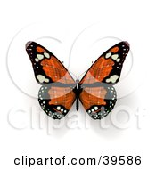 Clipart Illustration Of An Orange Solar Panel Butterfly