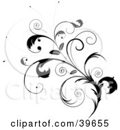 Clipart Illustration Of An Ornate Black Leafy Plant With Curly Tendrils And Leaves