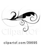 Poster, Art Print Of Tendriled Leaf Scroll On White