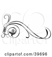Clipart Illustration Of A Tendril Tying Scrolls Together With Long Stems by dero #COLLC39696-0053