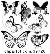 Clipart Illustration Of Seven Black And White Butterflies by dero