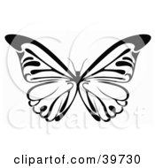 Clipart Illustration Of A Black And White Butterfly With Its Wings Spanned by dero